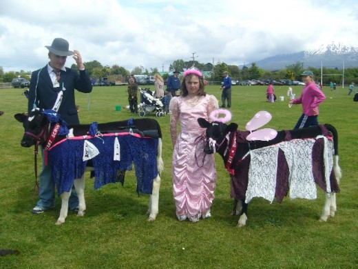 Two of my grandchildren on show day at school, dressed up their calves a real creative arts school project.