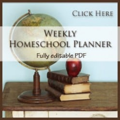 Created by a homeschool mom, the Weekly Homeschool Planner will organize your homeschool schedule.