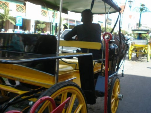 Becak and Andong,  two raditional transports in Yogyakarta which are preserved to be operational in the city amidst other modern means of transports.