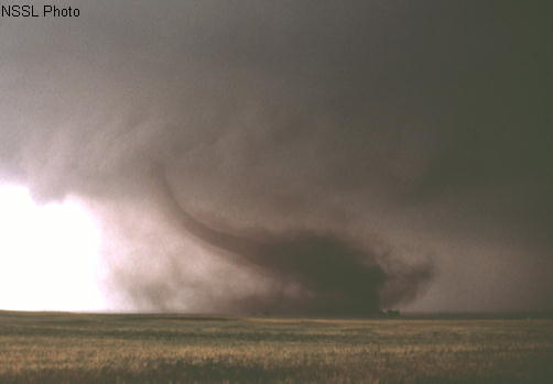 Photo courtesy of NSSL F1 rated tornado