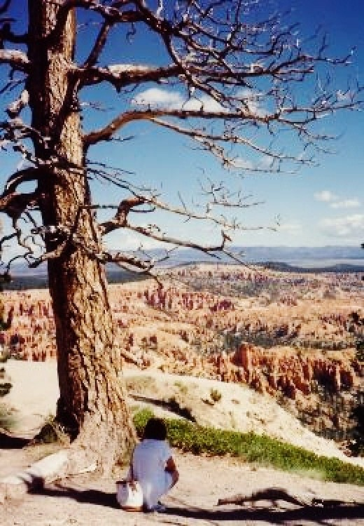 My niece looking at Bryce Canyon