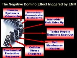 Effects of Cellphone Radiation