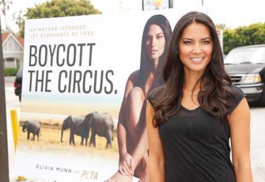PETA- Olivia combats Circus cruelty.