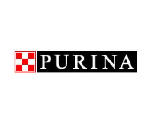 Purina Dog Food