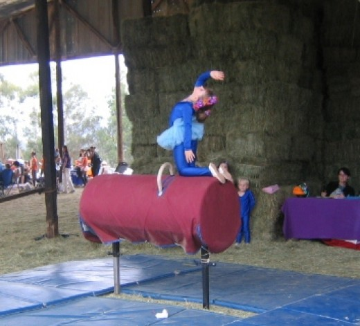 My daughter was able to take vaulting lessons when another homeschool mom and I exchanged services.