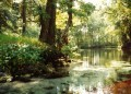 Silver Springs in Florida - Beautiful Attractions - Tarzan Movies and Jungle