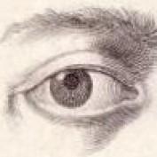 David Holmes profile image