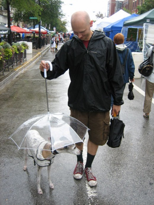 I liked this picture the best. The guy doesn't seem to mind getting wet as long as his poochie stays dry!