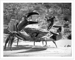 """Giant crab in """"Mysterious Island"""""""