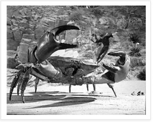 "Giant crab in ""Mysterious Island"""