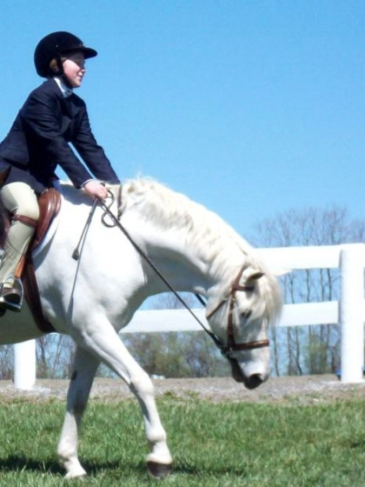 Girl Riding Pony Photo