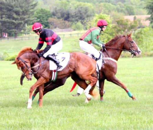 two horses racing picture