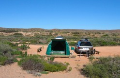 The campsite: just perfect - desert next to sea, and no electricity to bother me.