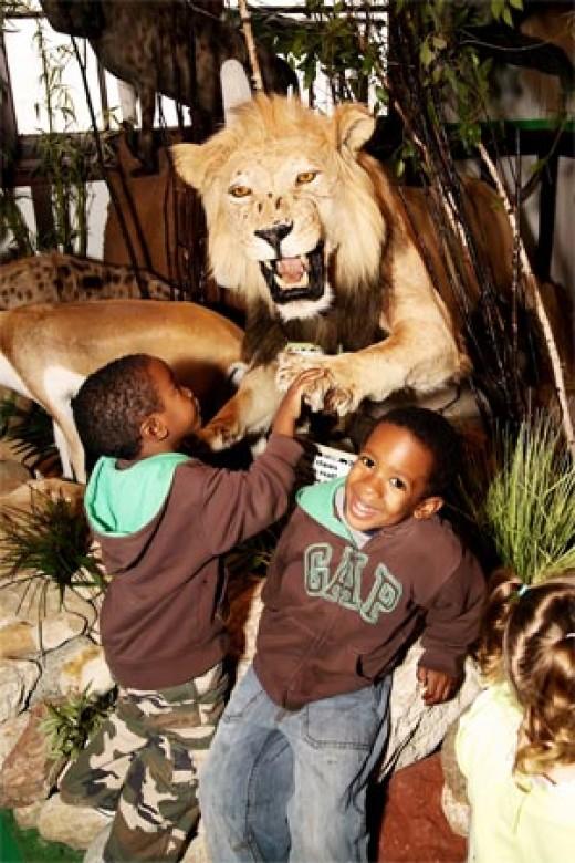two boys at the safari animal walk. Those are fake animal statues.