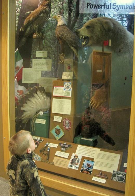 Burpee Museum Of Natural History Staff