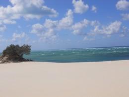 Sandy Cape