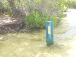 Walking Track and cigarette butt bin now covered in water!