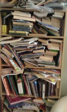 My friends bookcase before.