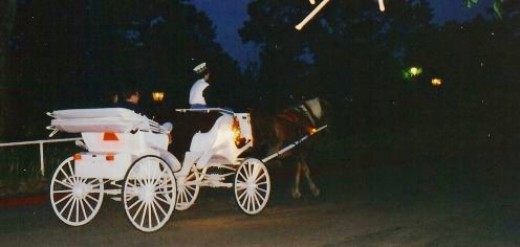 Horse drawn carriage rides offered at the Crescent Hotel