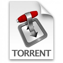 The real reason why you should NOT download torrents.