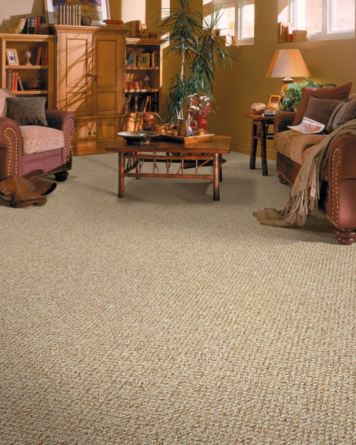 Carpet can really enhance the feel and comfort of a room