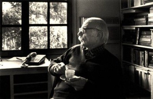 Another world is possible may not be the original source for this picture of Ernesto Sabato. The site specializes in Literature and Poetry. A translation to Mannea's letter to Sabato was originally published by World without Borders.