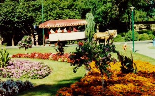Horse drawn carriage in Beacon Hill Park