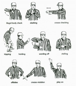 The Opinion Referee