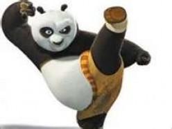 Google Panda Update: How to Avoid Getting Panda Slapped