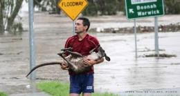 Queensland Floods, January, 2011