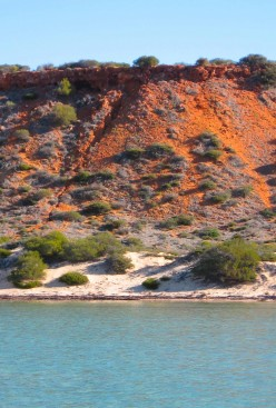Incredible colour sheme on the foreshores of Shark Bay