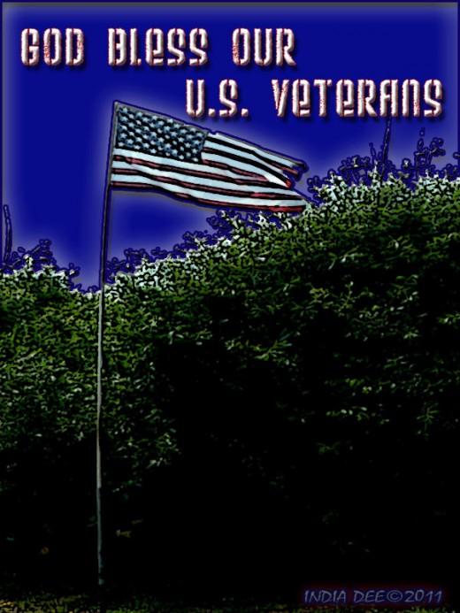 Honoring American Veterans by honoring the American Flag.