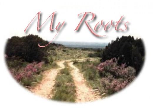 Ranch road with ceniza.