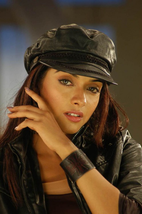 Asin Thottumkal is one of India's fastest rising stars.
