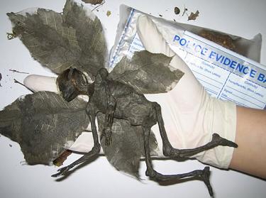 Dan Baines Fairy Hoax