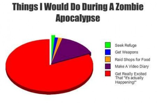 What I would do during a zombie apocalypse