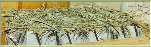 Sukkah Roofs for Sukkot. Cropped by Tricia Mason. see: http://en.wikipedia.org/wiki/File:Sukkah_Roofs.jpg
