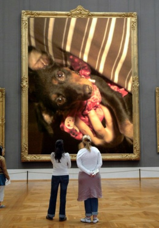 This is how I created my dog's museum with Dumpr.