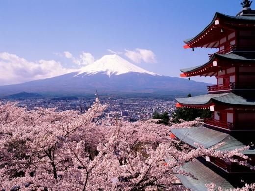 Fuji-san, Sakura and pagoda.