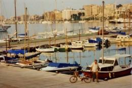 Palma bay scenery