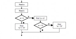 Software Testing - Branch/Decision Testing