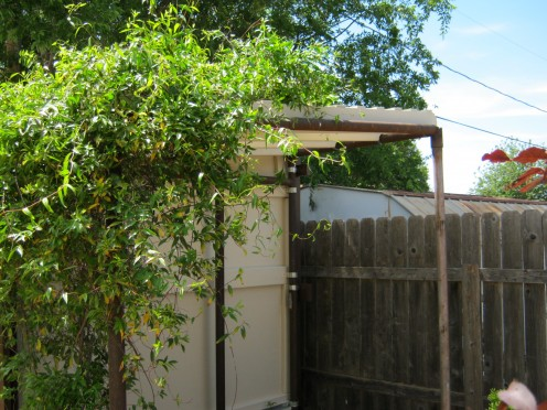 Pergola for Jasmine to grow over.