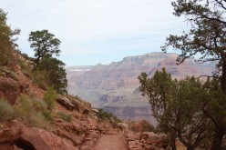 What You Need to Do to Hike in the the Grand Canyon