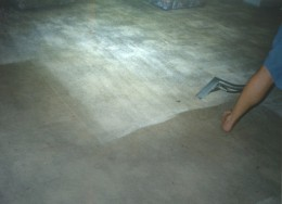Colour restoration Carpet Cleaning before a recolor or dye is applied