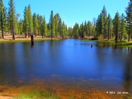 "An enchanced photo showing the splendid colors of this ""unnamed"" lake by Wilbur's grave, Holcombe Valley, Ca."