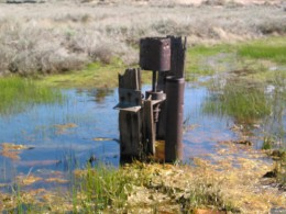 a rusted pioneer's pump where miner's drew water from underground springs; Holcombe Valley, California.
