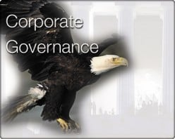 Issues in Corporate Governance