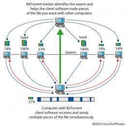 How Torrents Work