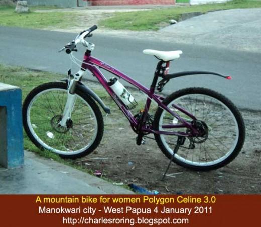 Mountain Bike for Ladies - Polygon Celine 3.0