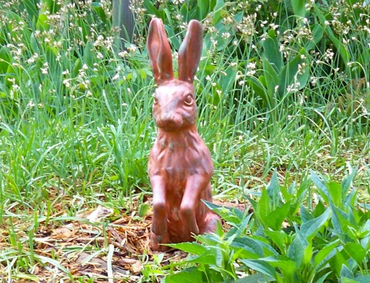 English Hare Watching Primrose Jump Out Of The Ground :)